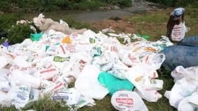 Prof Judi Wakhungu: Ban on plastic bags good for Kenya