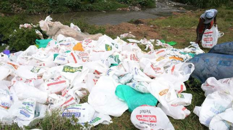 Prof Judi Wakhungu: Ban on plastic bags good for Kenya